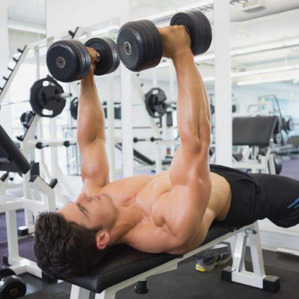 latihan beban fitness indonesia